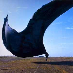 Pink Floyd - High Hopes - single cover